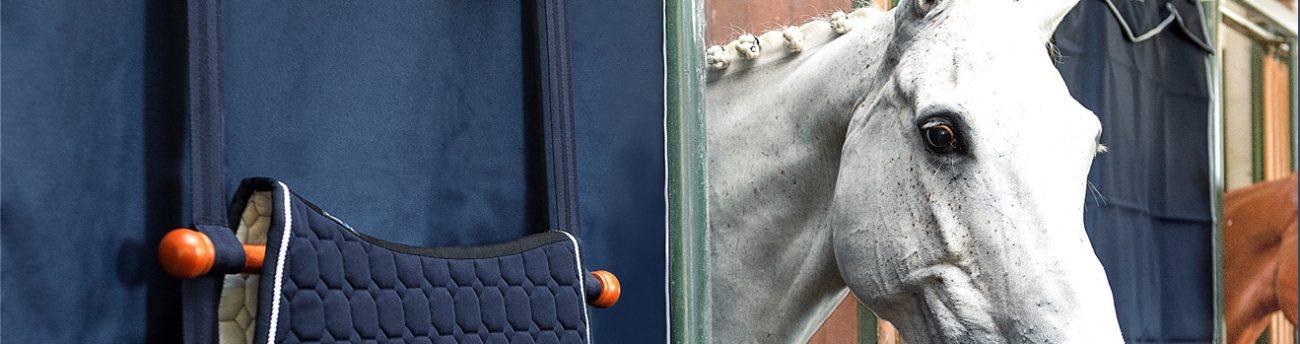 listing-cavallo-scuderie